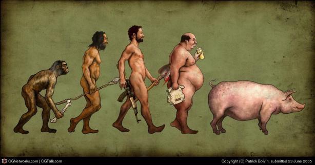 De evolutie van de man